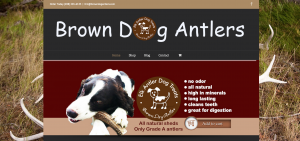 Brown-Dog-Antlers-Website